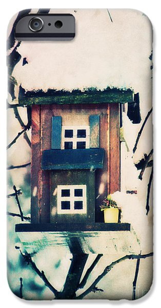 Wintertime Mixed Media iPhone Cases - Bird House iPhone Case by Angela Doelling AD DESIGN Photo and PhotoArt