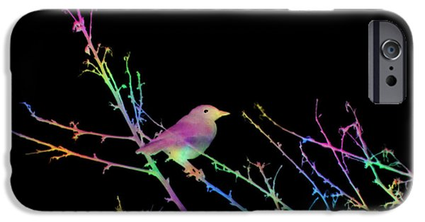 Abstract Digital Art iPhone Cases - Bird on Black iPhone Case by Kathy Franklin