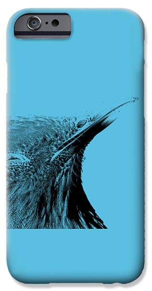 Animal Drawings iPhone Cases - Bird Transparent Background iPhone Case by Edward Fielding