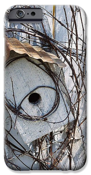 Birdhouse iPhone Cases - Birdhouse Brambles iPhone Case by Lauri Novak