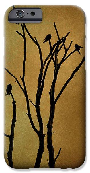 Dave Digital Art iPhone Cases - Birds in Tree iPhone Case by David Gordon