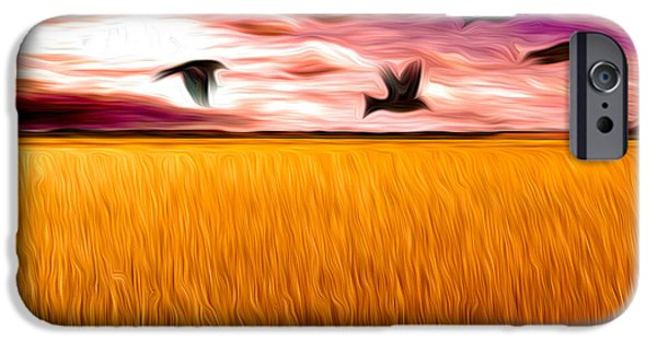 Caruso iPhone Cases - Birds Over Wheat Field iPhone Case by Anthony Caruso