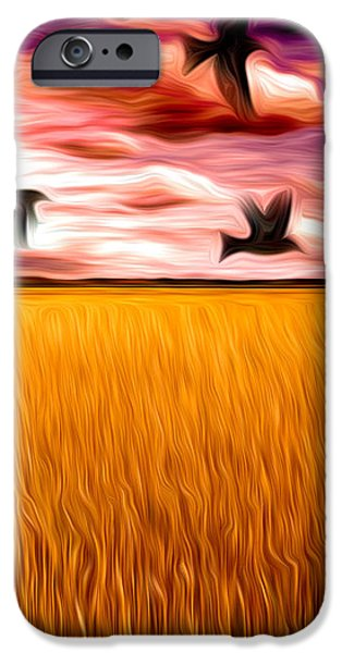 Birds Over Wheat Field iPhone Case by Anthony Caruso