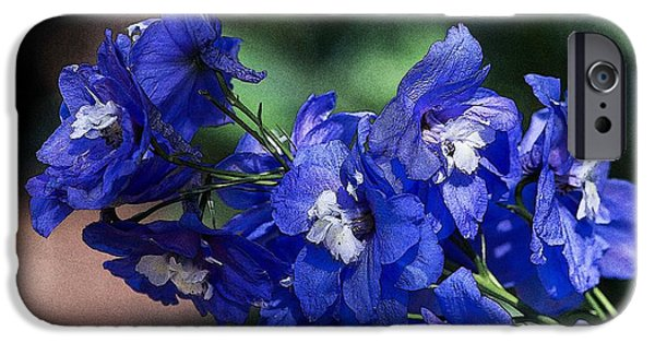 July iPhone Cases - Birth Month Flower - July - Larkspur iPhone Case by Jelena Ciric