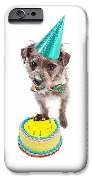 Party Birthday Party iPhone Cases - Birthday Dog Eating Cake iPhone Case by Susan  Schmitz