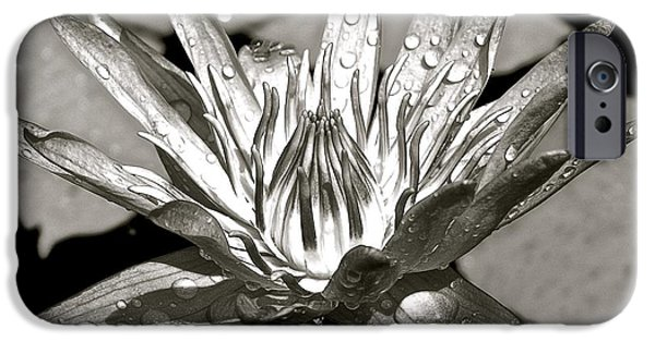 Buddhist iPhone Cases - Black and White Waterlily iPhone Case by Joe Wyman