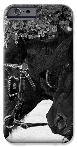 Black beauties iPhone Case by Stuart Turnbull