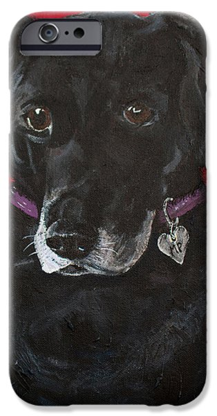 Mixed Labrador Retriever iPhone Cases - Black Labrador Retriever iPhone Case by Karen Dortschy