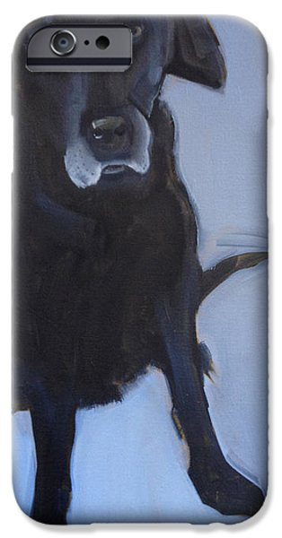 Black Dog iPhone Cases - Black labrador iPhone Case by Sally Muir