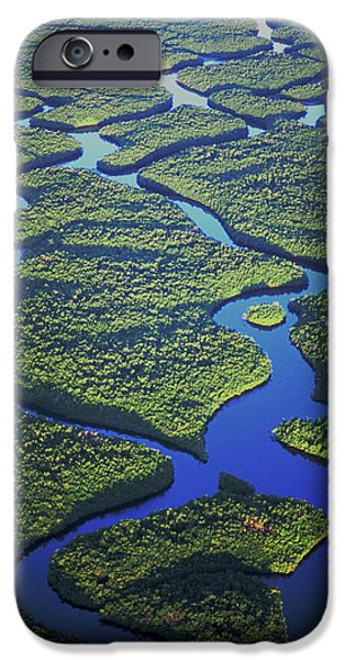 Mangrove Forest iPhone Cases - Black mangrove islands iPhone Case by Michael Turco