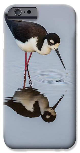 Best Sellers -  - Animals Photographs iPhone Cases - Black-necked Stilt Reflection iPhone Case by Andres Leon