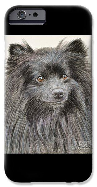 Recently Sold -  - Cute Puppy iPhone Cases - Black Pomeranian Painting iPhone Case by Kate Sumners