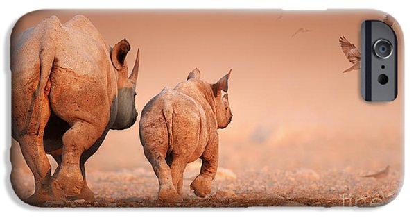 Rear View iPhone Cases - Black Rhinos iPhone Case by Johan Swanepoel