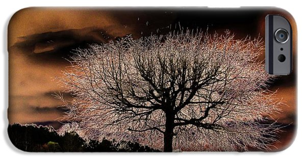 Surreal Landscape Pyrography iPhone Cases - Black Tree iPhone Case by Tracie Shelton