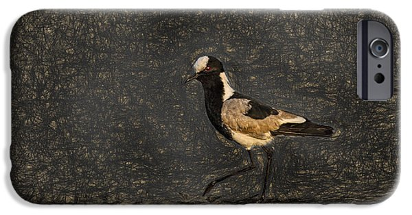 Lapwing iPhone Cases - Black-winged Lapwing Art iPhone Case by Kay Brewer