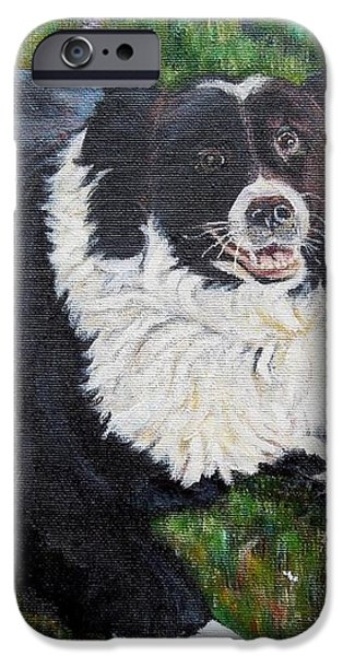 Blackie iPhone Case by Marilyn  McNish