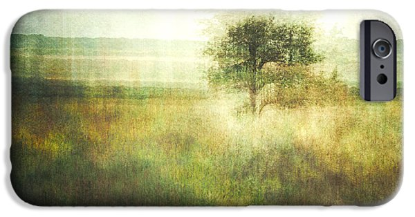 Nature Abstract iPhone Cases - Blackthornes Secrets iPhone Case by Violet Gray
