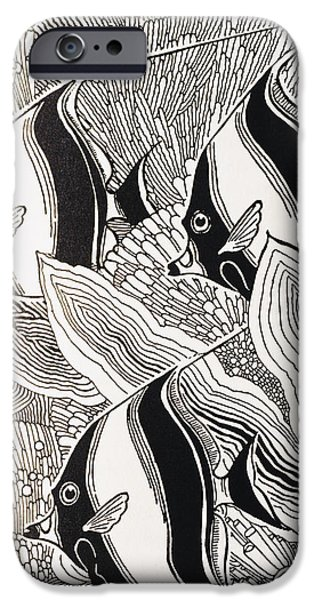 Art Medium iPhone Cases - Blandings Angelfish iPhone Case by Hawaiian Legacy Archive - Printscapes