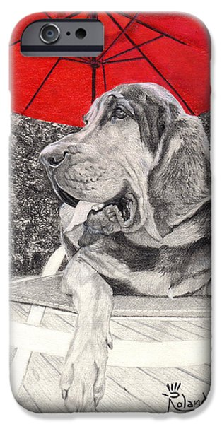 Dog Under Chair. iPhone Cases - Bloodhound Under Umbrella iPhone Case by Tracy Roland