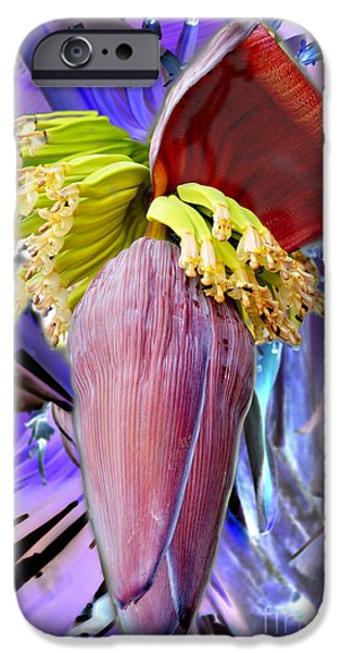 Plant Tapestries - Textiles iPhone Cases - Bloom iPhone Case by James Hennis