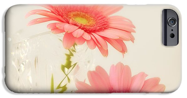 Blossom iPhone Cases - Blossom iPhone Case by SK Pfphotography