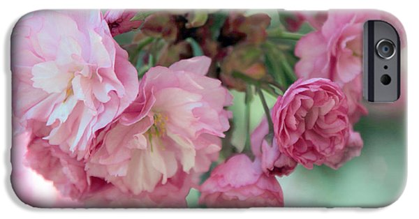 Cherry Blossoms iPhone Cases - Cherry Jubilee iPhone Case by Jessica Jenney
