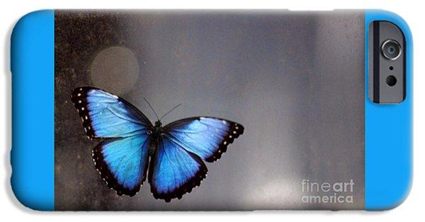 Flight iPhone Cases - Blue Butterfly Dreams iPhone Case by Karen Adams