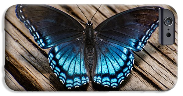 Spring Tapestries - Textiles iPhone Cases - Blue Butterfly iPhone Case by James Hennis