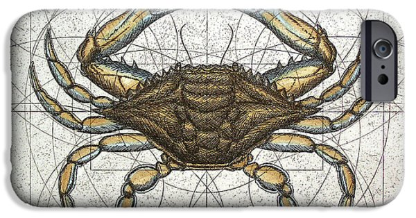 Cape Cod Mixed Media iPhone Cases - Blue Crab iPhone Case by Charles Harden