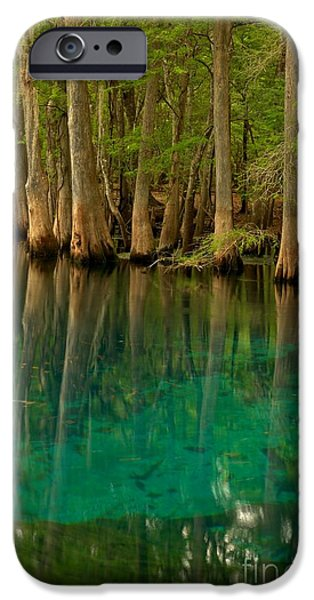 Chiefland iPhone Cases - Blue Cypress Reflections iPhone Case by Adam Jewell