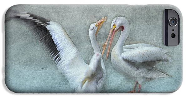 Sea Birds iPhone Cases - Blue Dance iPhone Case by Evie Carrier