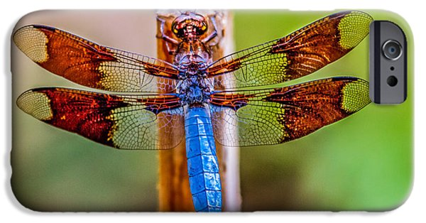 Haybale iPhone Cases - Blue Dragonfly iPhone Case by Robert Bales