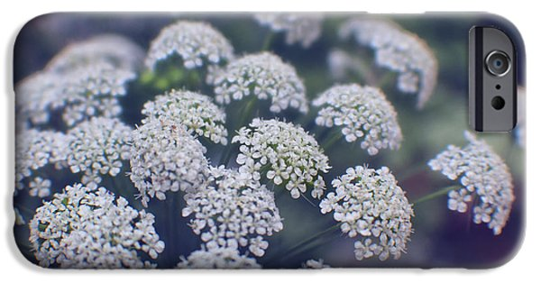 Consumerproduct iPhone Cases - Blue Evening on Queen Annes Lace iPhone Case by Ella Kaye Dickey