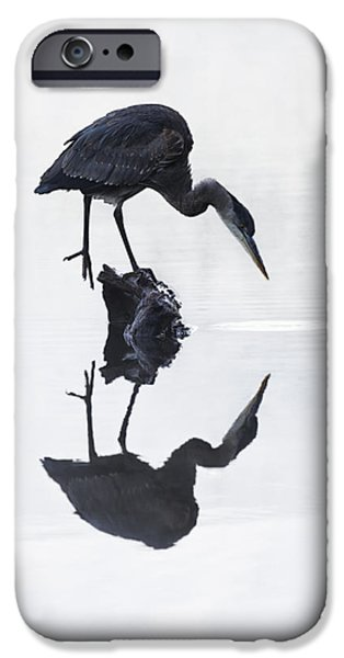 October iPhone Cases - Blue Heron in High Key iPhone Case by Mark Kiver