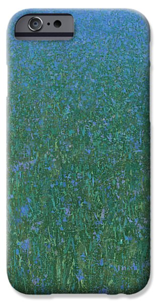 Meadow iPhone Cases - Blue Meadow 2 iPhone Case by Steve Mitchell