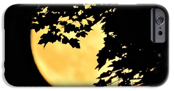 Best Sellers -  - Moonscape iPhone Cases - Blue Moon Rising Behind Red Maple iPhone Case by Jamie K Reaser