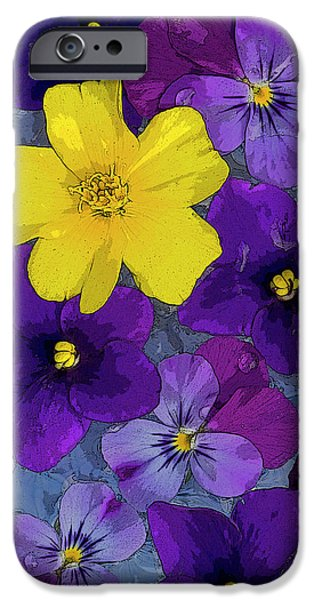 Butterflies Paintings iPhone Cases - Blue Pond iPhone Case by JQ Licensing