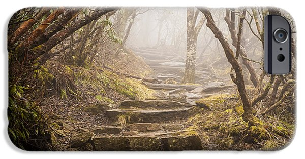 Recently Sold -  - Fog Mist iPhone Cases - Blue Ridge Mountains NC Craggy Pinnacle Heavenly Path iPhone Case by Robert Stephens