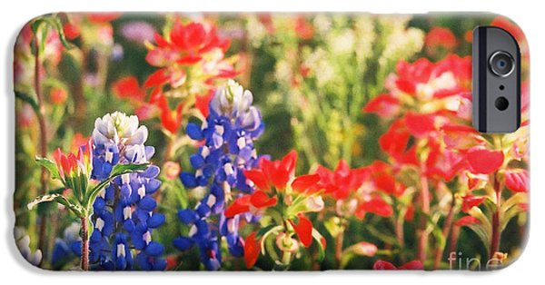 Chatham iPhone Cases - Bluebonnets and Friends iPhone Case by Karen Kennedy Chatham