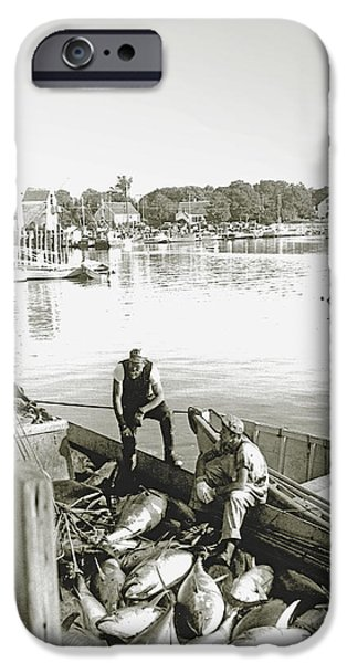 Bluefin Tuna at Barnstable Harbor iPhone Case by Charles Harden