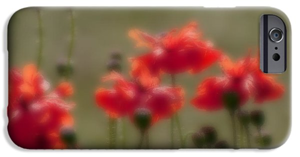 Nature Abstract iPhone Cases - Blurred seasonal flowers with defocussed background iPhone Case by Rudra Narayan  Mitra