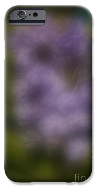 Nature Abstract iPhone Cases - Blurred seasonal orchid flower with dark background iPhone Case by Rudra Narayan  Mitra