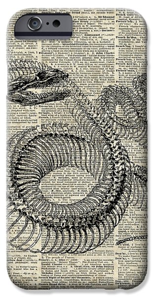 Boa Constrictor iPhone Cases - Boa Snake Skielet an dictionary page iPhone Case by Jacob Kuch