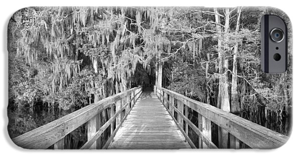 Manatee iPhone Cases - Boardwalk Into The Cypress In Black And White iPhone Case by Adam Jewell