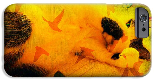 Abstract Digital Photographs iPhone Cases - Bob The Abstract Cat--May All Your Dreams Come True iPhone Case by Kathy Barney