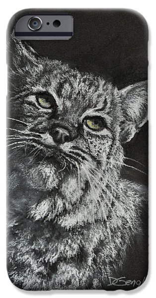 Bobcats Pastels iPhone Cases - Bobcat iPhone Case by Deb Gengler
