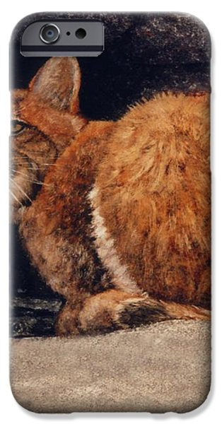 Bobcat On Ledge iPhone Case by Frank Wilson
