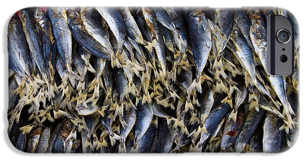 Stock Images iPhone Cases - Bodboron Filipino Dried Fish iPhone Case by James BO  Insogna