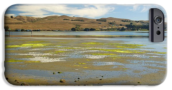 Bodega Bay iPhone Cases - Bodega Harbor iPhone Case by Suzanne Gaff