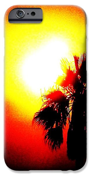 Palm Tree Greeting Cards iPhone Cases - Bold iPhone Case by Daniele Smith